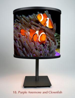 18. Purple Anemone And Clownfish